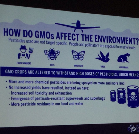 DrBronner's GMO effect slide at ShiftCon
