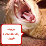 KitchenAid Mixer Giveaway with Celiac and the Beast
