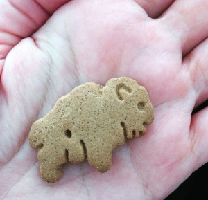 Summer Snacks 2015: Glutino Animal Crackers
