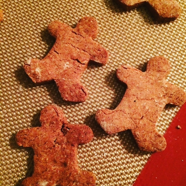 gF Jules Gingerbread Mix