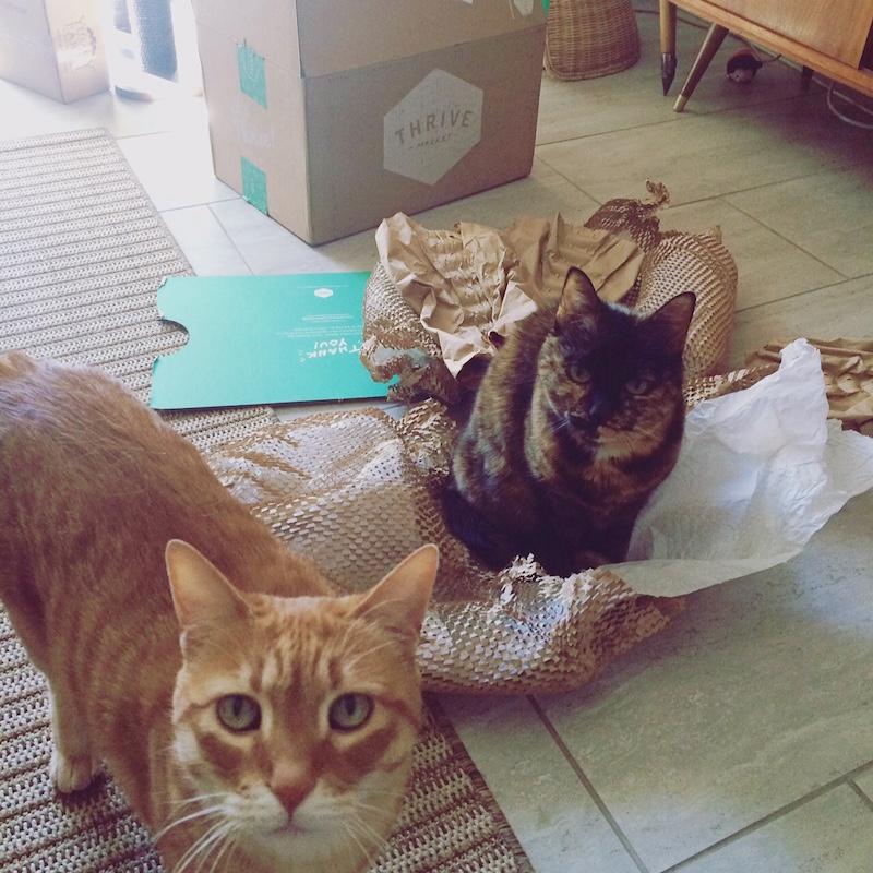 Thrive Market Loves Cats