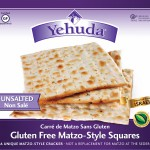 Gluten Free Passover 2016 Must Haves