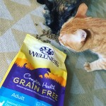 #HealthyMeetsHappy with Wellness Complete Health Grain-Free Cat Food