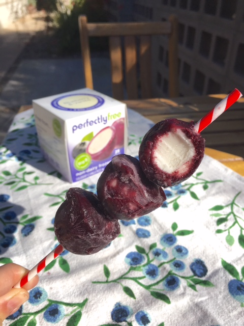 perfectly free Blueberry Frozen Dessert Treats