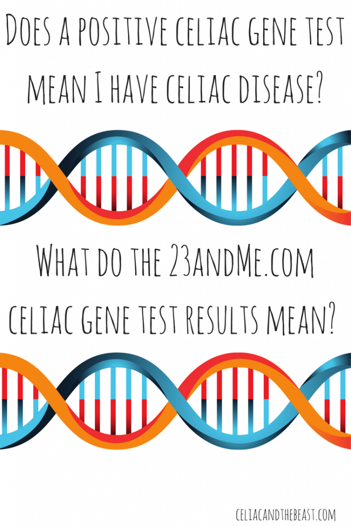 Does a positive celiac gene test mean I have celiac disease- What do the 23andMe.com celiac gene test results mean-